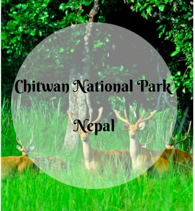 Chitwan National Park, Nepal