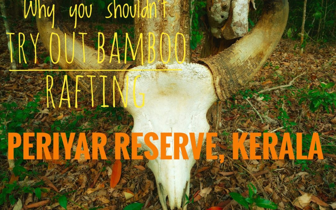 Why you shouldn't try out Bamboo Rafting at Periyar Tiger Reserve?