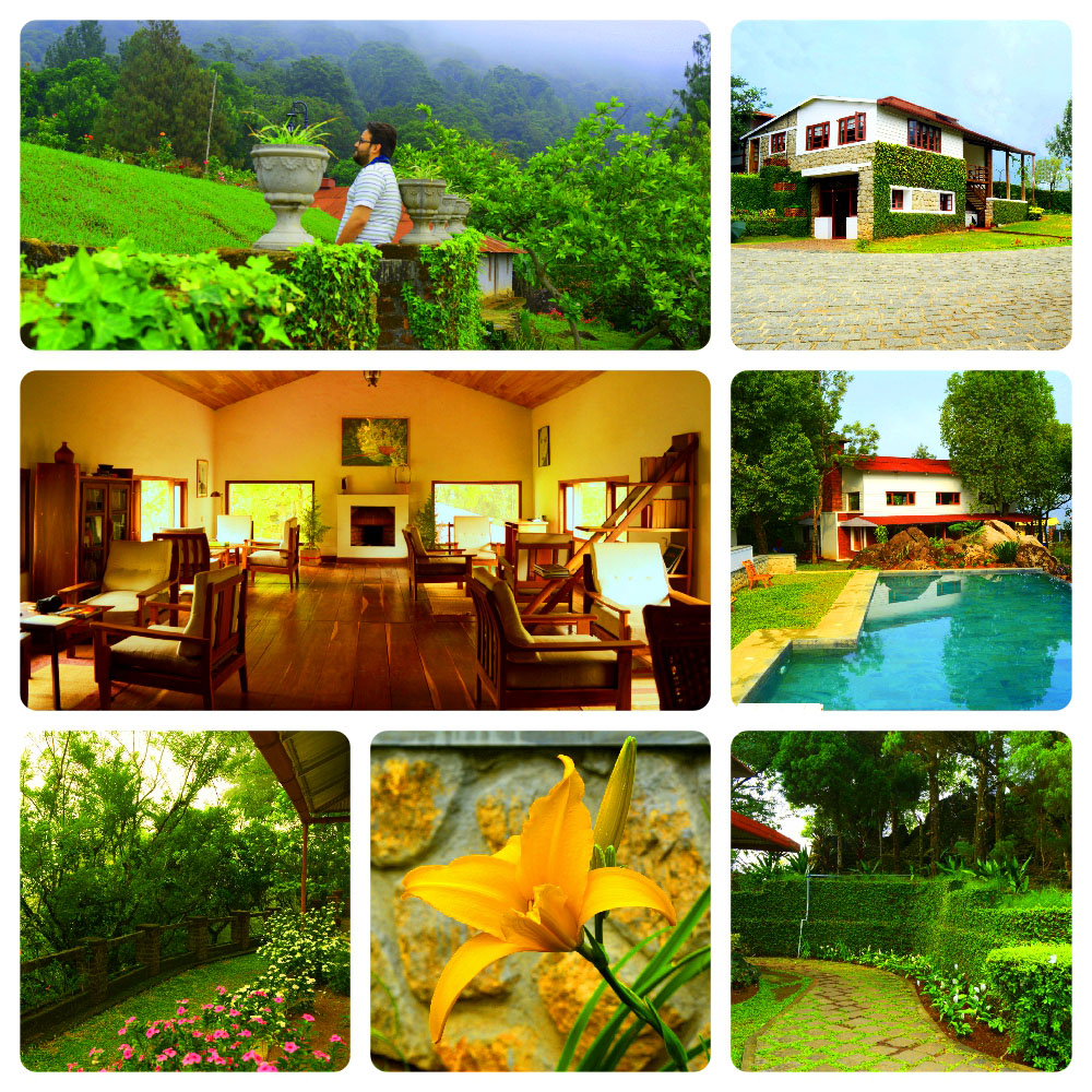 The Windermere Estate, Munnar