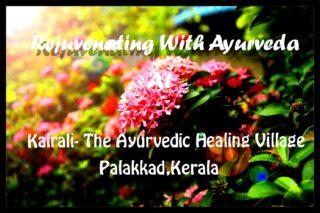 Rejuvenating with Ayurveda at Kairali Ayurvedic Village, Palakkad, Kerala