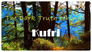 The Dark Truth behind Kufri