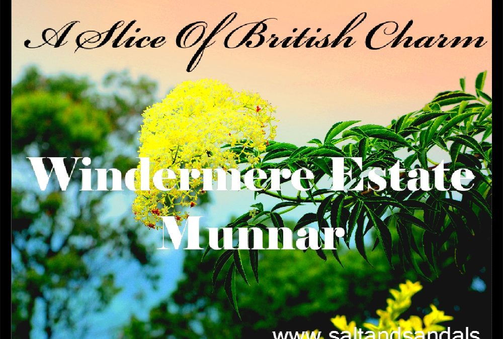A slice of British charm: The Windermere Estate, Munnar