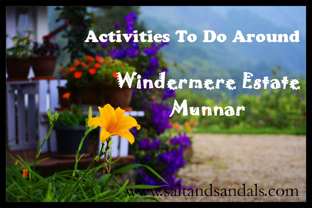Activities to do around the Windermere Estate, Munnar
