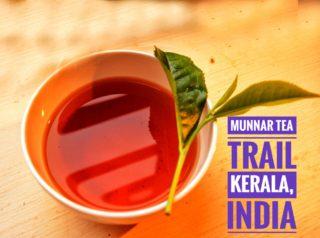 Munnar, Kerala: Tea Trail