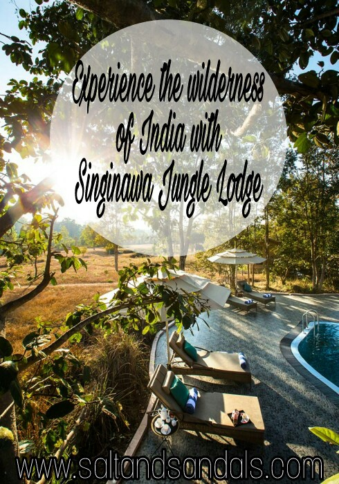 Explore the wilderness of Madhya Pradesh with Singinawa Jungle Lodge